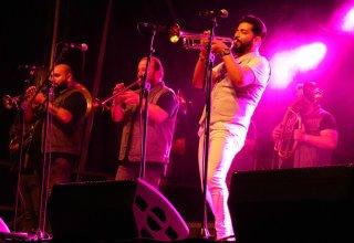 dzambo_concert1web.jpg